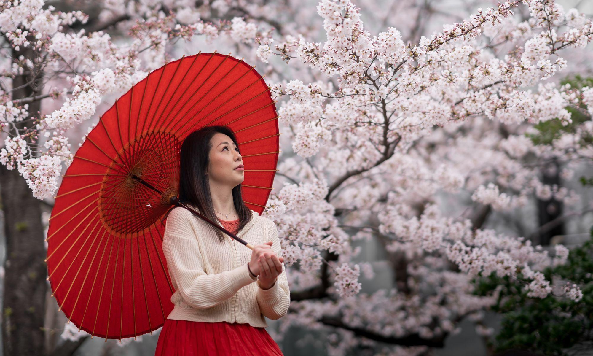 Instameet: Sakura